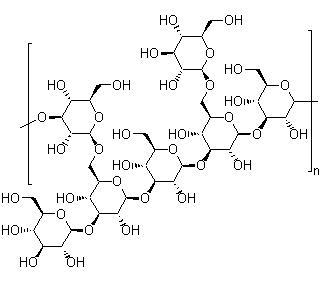 糖类及淀粉相关检测项目